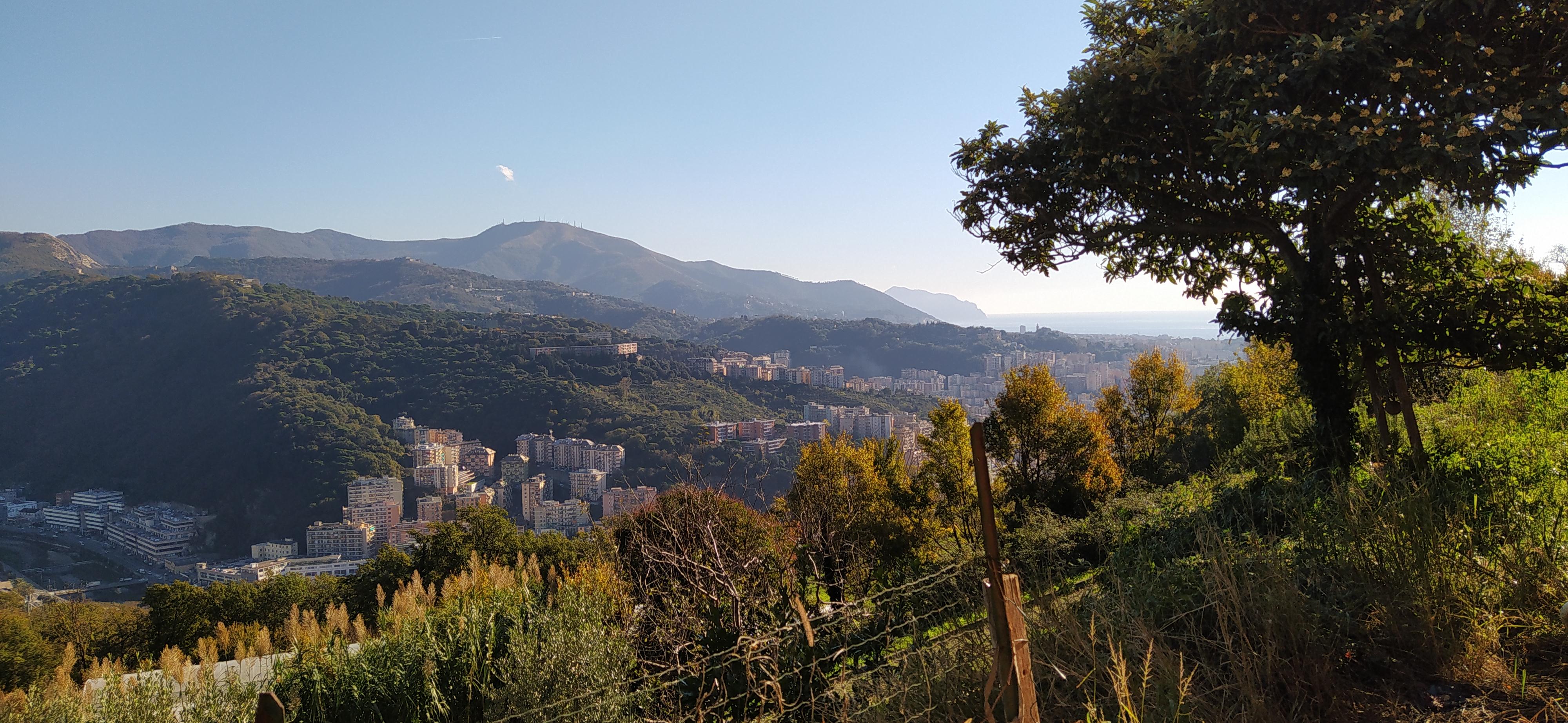 Via Cima San Pantaleo,Genova,16100,Appartamento,Via Cima San Pantaleo,1223